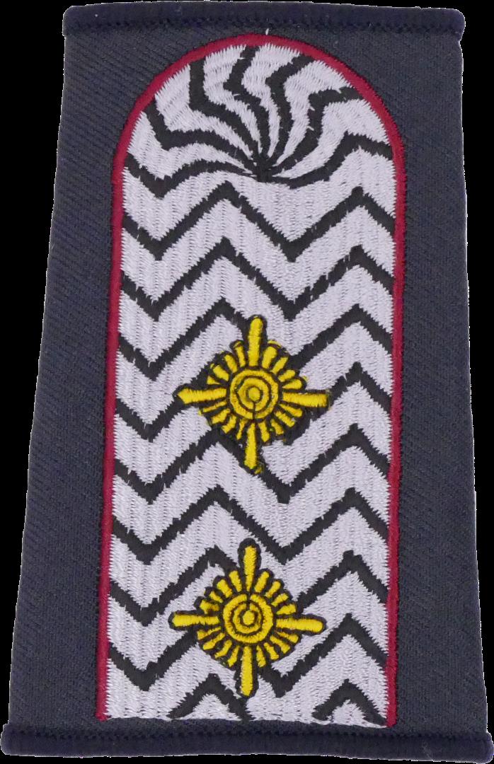 Brandenburg Brandamtmann - Berufsfeuerwehr Dienstgradschlaufen /