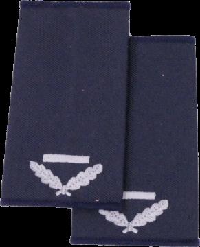 Niedersachsen Brandmeister z A - Berufsfeuerwehr