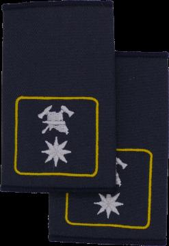 Rheinland-Pfalz Fachbereichsmitglied Landesfeuerwehrverband FFW Dienstgradschlaufen Schulterschlaufen