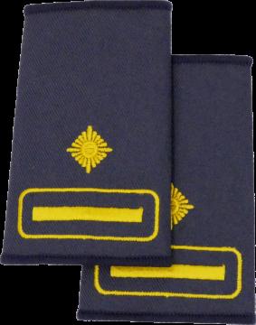 Rheinland-Pfalz Kreis-/Stadtfeuerwehrinspekteur/-in - FFW Dienstgradschlaufen /