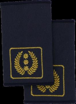 Rheinland-Pfalz Präsident des Landesfeuerwehrverband FFW Dienstgradschlaufen