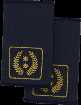 Rheinland-Pfalz Vizepräsident Landesfeuerwehrverband FFW Dienstgradschlaufen Schulterschlaufen