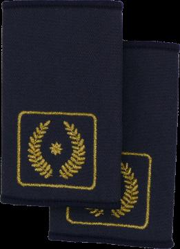 Rheinland-Pfalz Vorstandsmitglied Landesfeuerwehrverband FFW Dienstgradschlaufen Schulterschlaufen