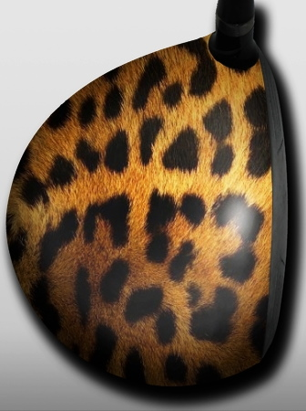 Leopard - 1