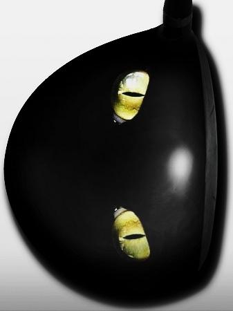 Black Cat Eyes - 1