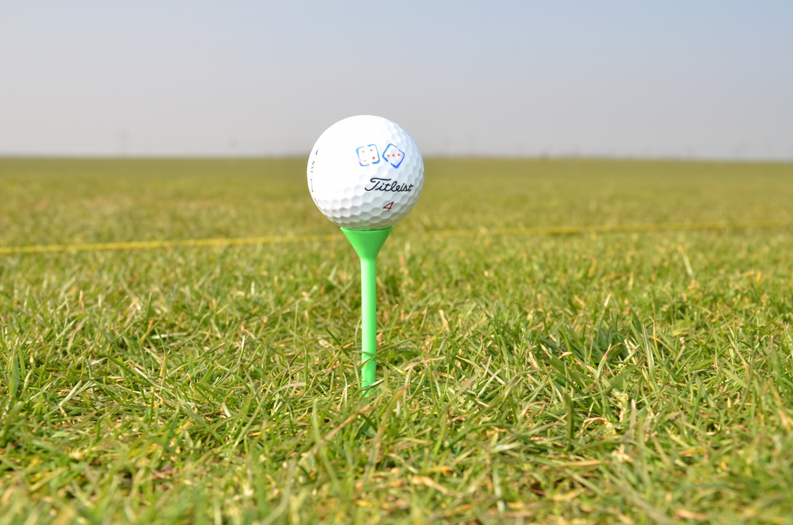 Martini Golf Tees Lang 4