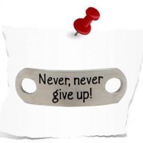 Single TAG - Never never give up -Matt - Shoe Tags sind kleine Edelstahl Schilder die an die Schuhe gebunden werden. Mit Never never give up kann man gar nicht mehr aufgeben.