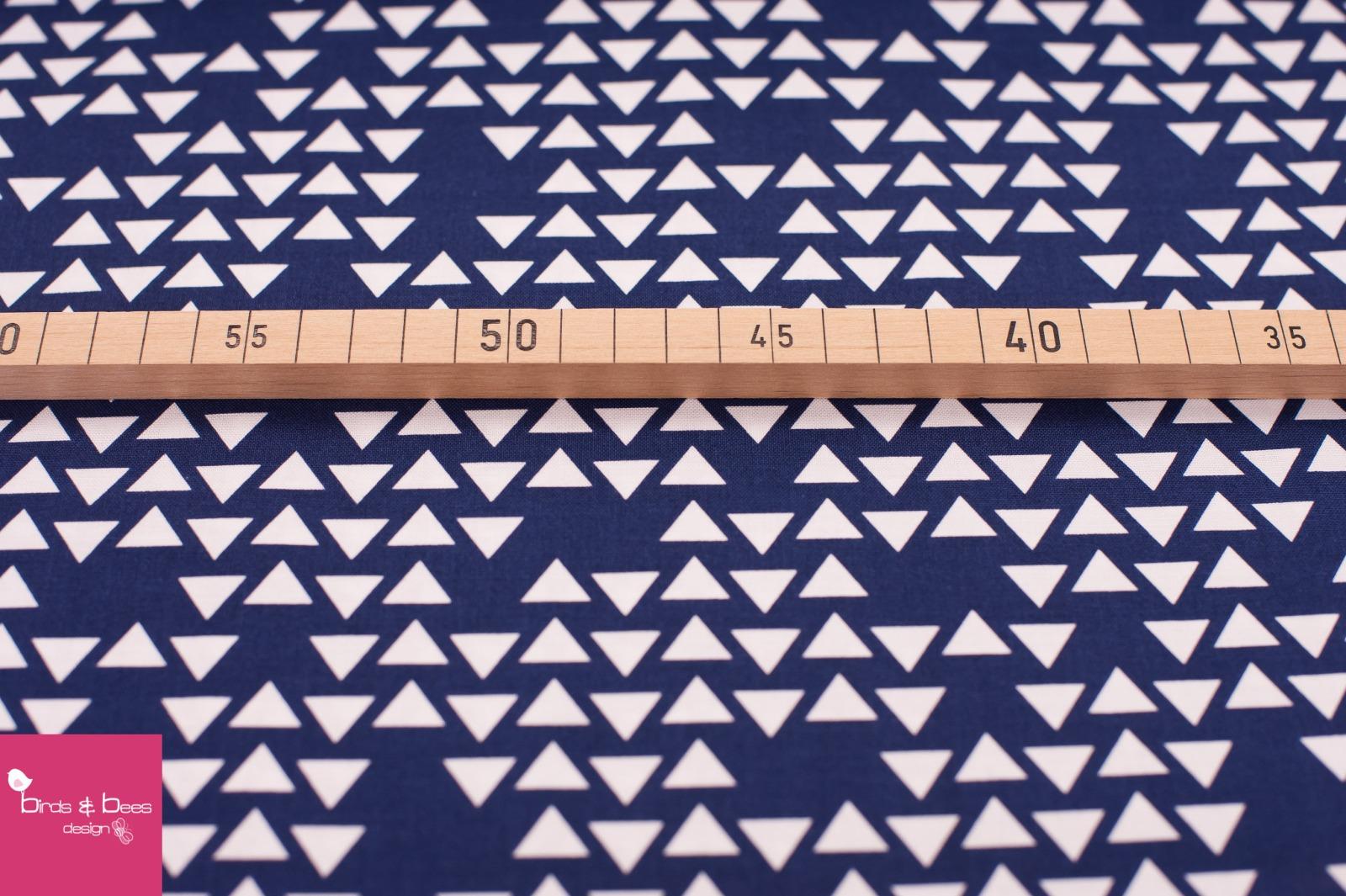 POPULAR DEMAND triangle navi 2