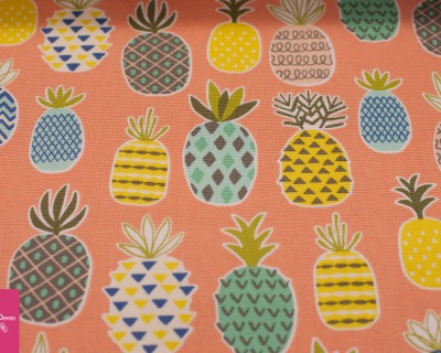 Pineapple Canvas peach