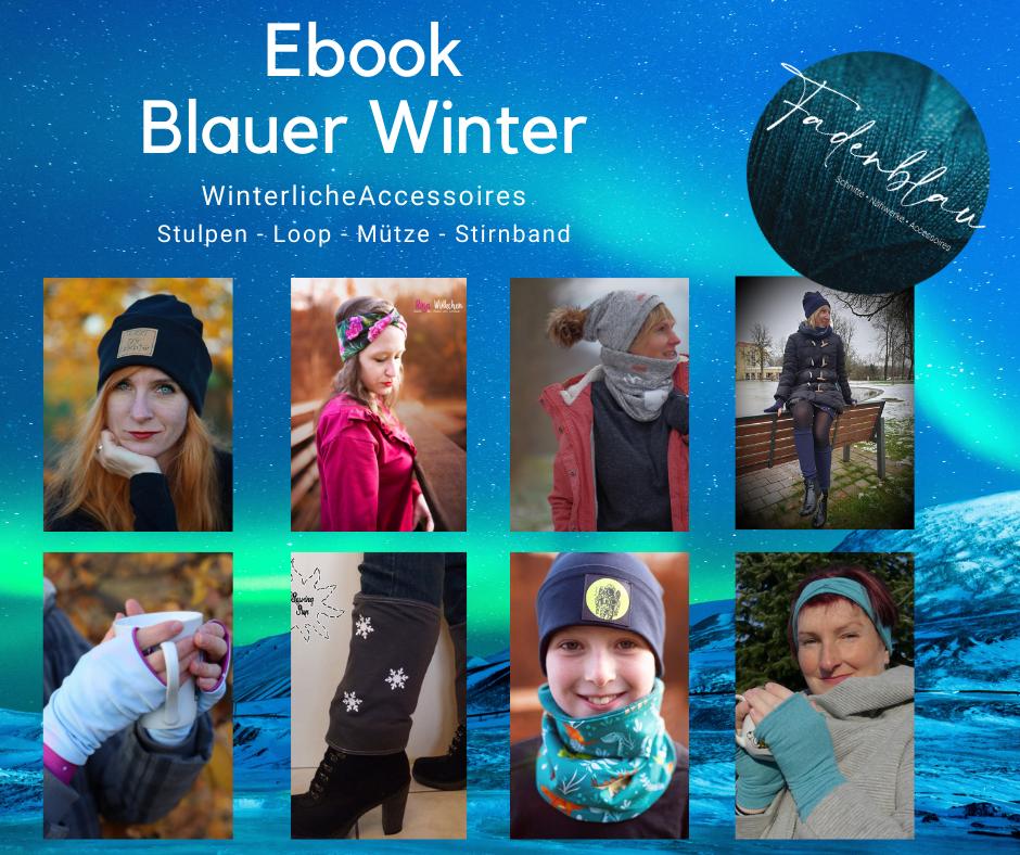 Ebook Blauer Winter
