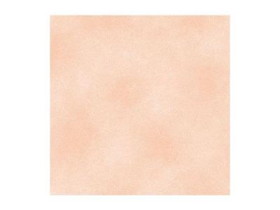 Shadow Blush Peach - 1803