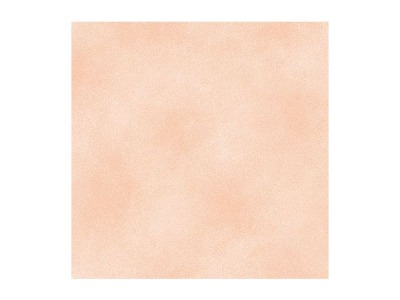 Shadow Blush Peach - 1803