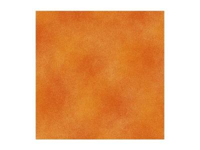Shadow Blush Orange - 3267