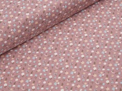 Bio Jersey Lieselottchen rosa