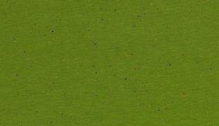 05m Sweat Cosy Colours grün