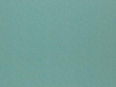 05 m BW Webware Dotty mint