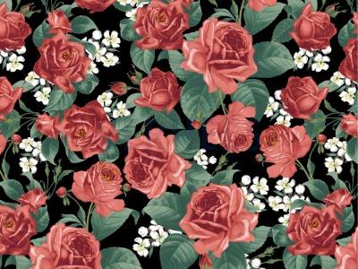 05 m Canvas schwarz mit Rosen