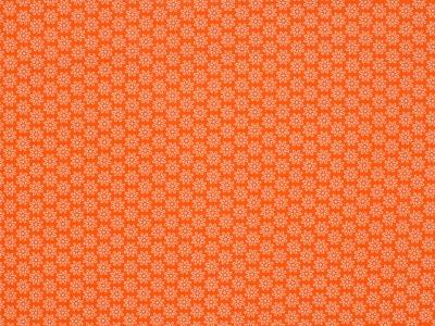 05 m BW Webware Daisy orange
