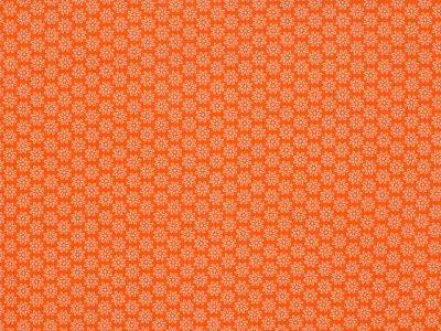 05 m BW Webware Daisy orange
