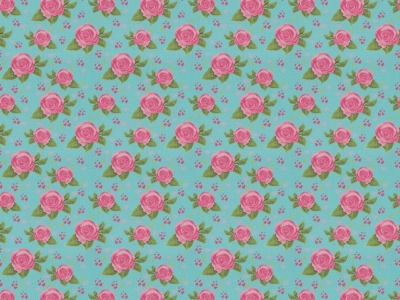 05 m BW Webware Rosen auf