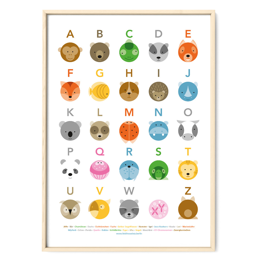 Tier ABC Poster Plakat Animals Kreise - 1