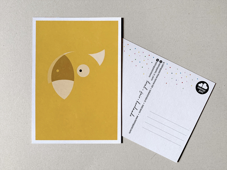 Postkarten Fuchs Eisbär Waschbär Papagei und - 3