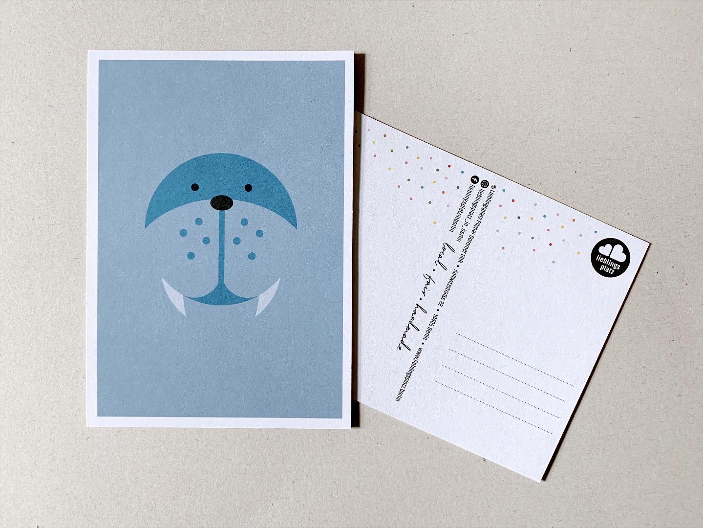 5 Postkarten, Fuchs, Eisbär, Waschbär, Papagei und Walross - 4