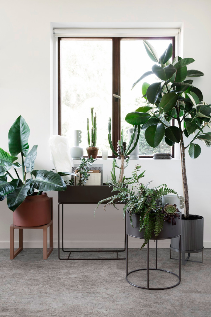 PLANT BOX ROUND WARM GREY von - 3