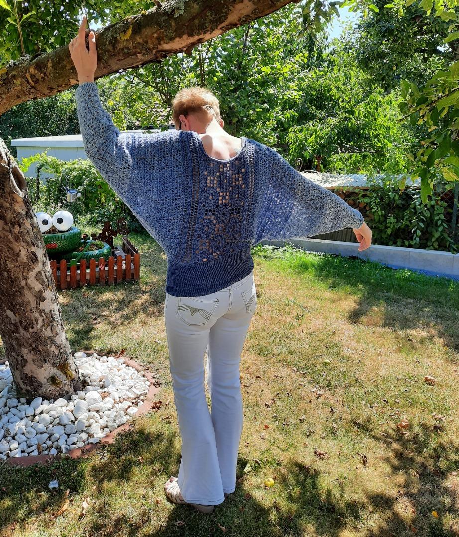 Fledermaus-Pullover Abendsegler 2