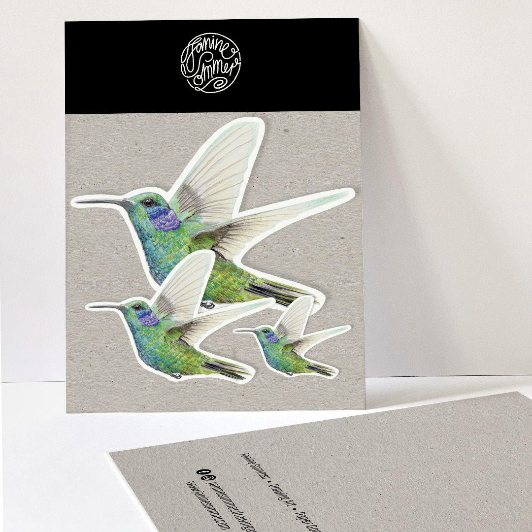 3 Sticker Kolibri