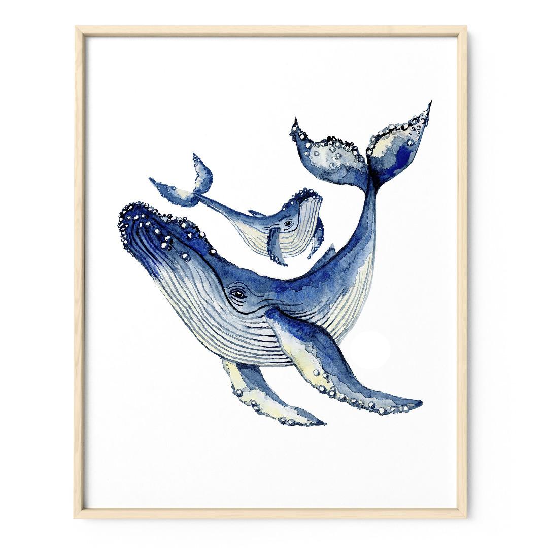 Buckelwale Poster Kunstdruck Zeichnung