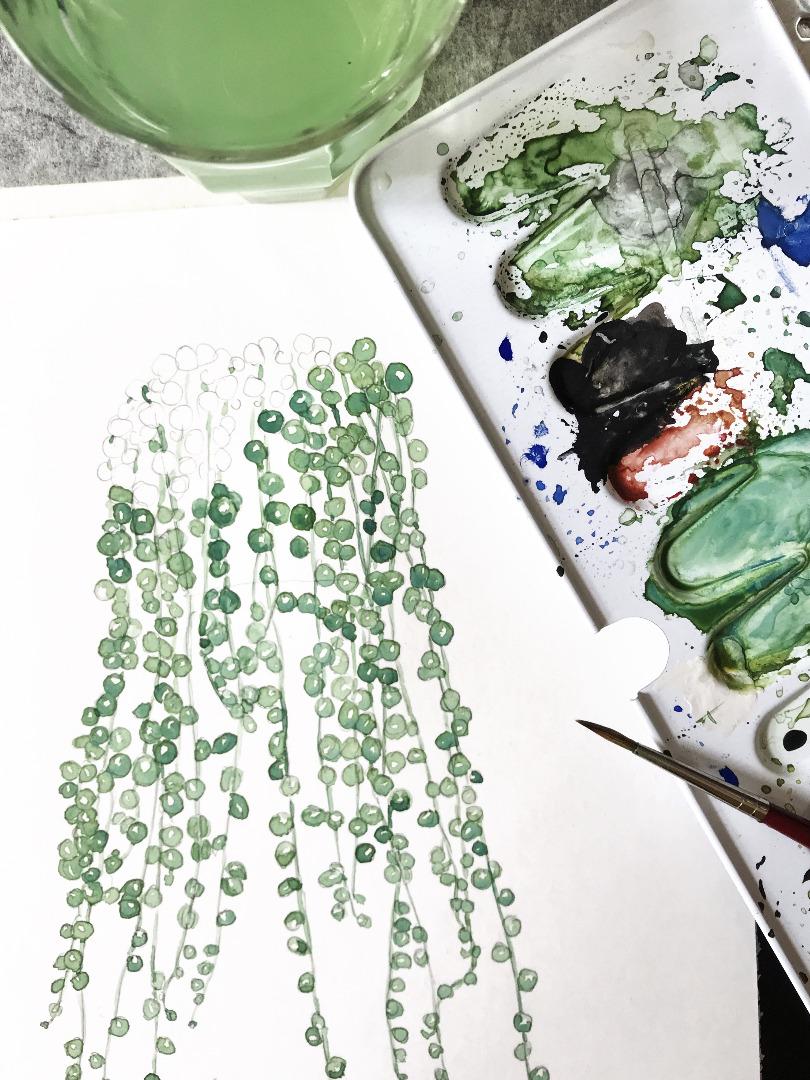 Erbsenpflanze Poster Kunstdruck Zeichnung 2
