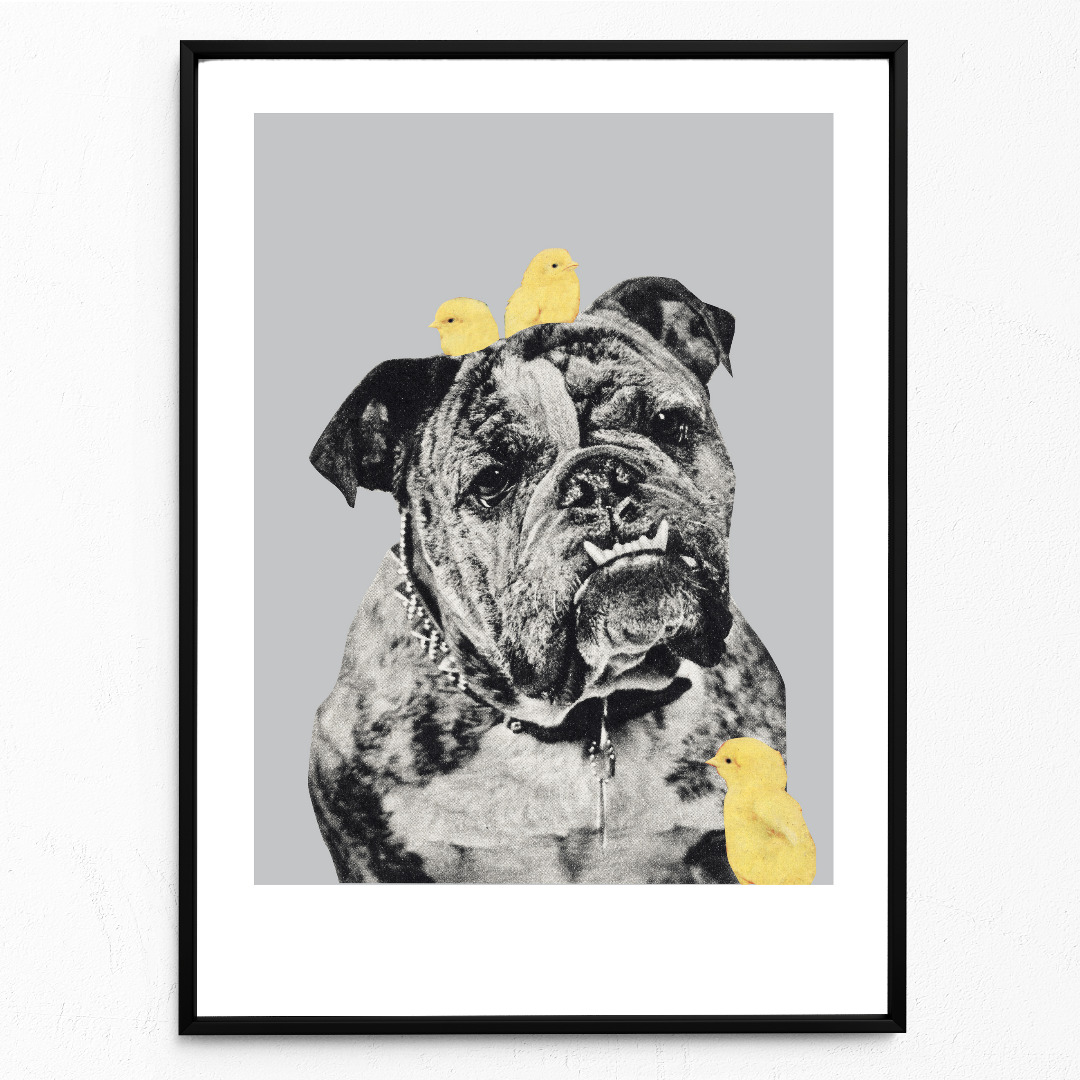 Bulldog Poster Kunstdruck DIN A3