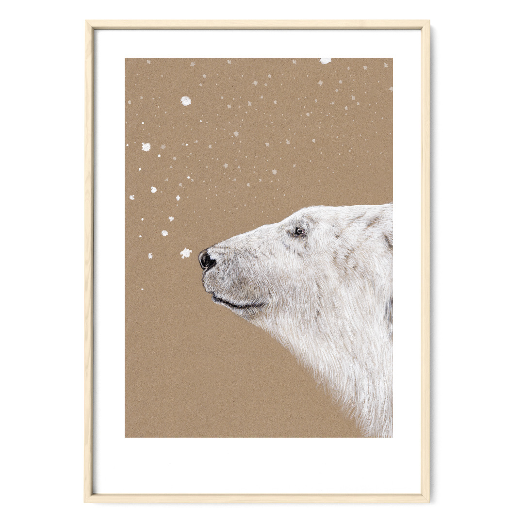 Polarbär Eisbär Poster Kunstdruck Zeichnung