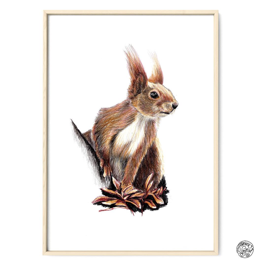 Eichhörnchen 02 Poster Kunstdruck Zeichnung