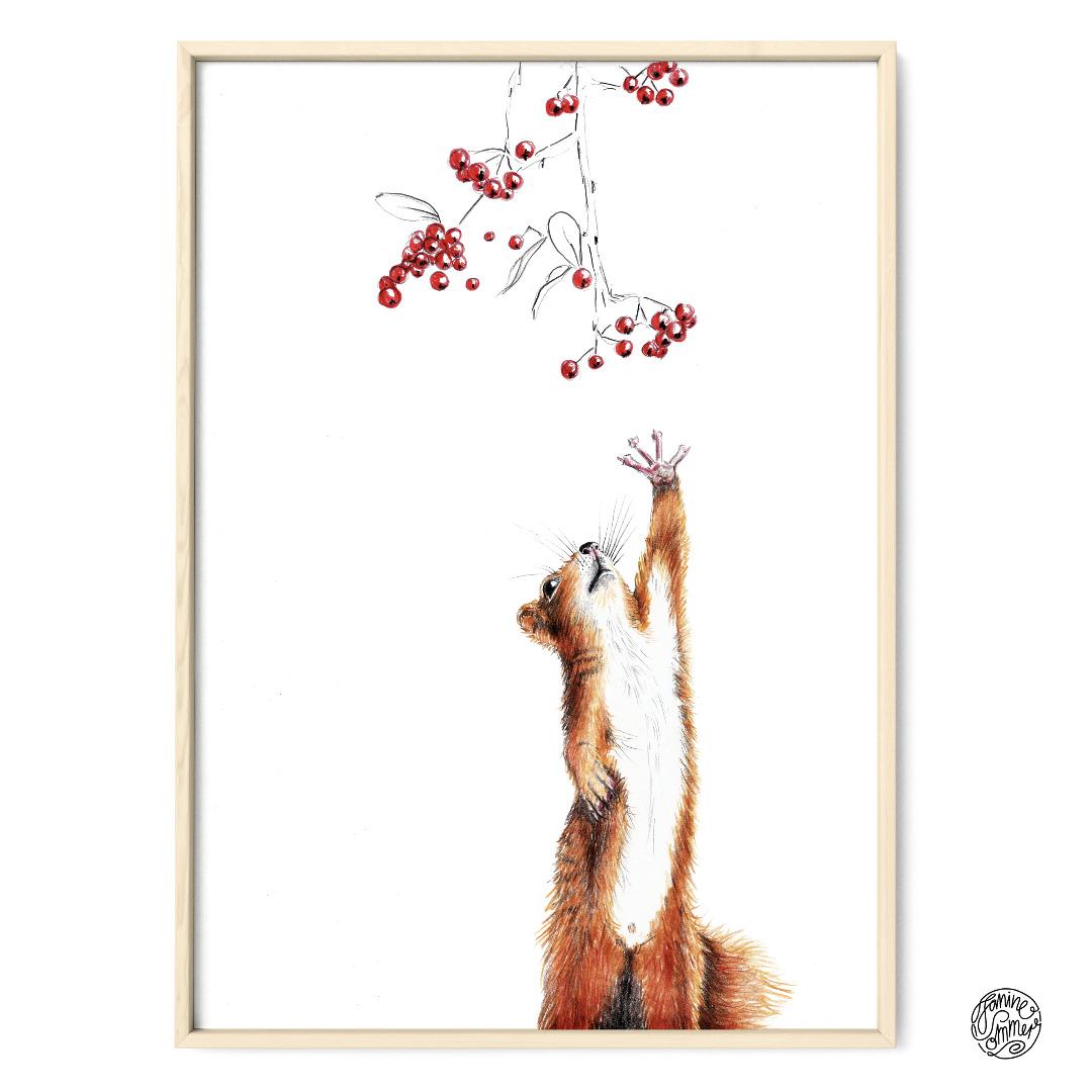 Eichhörnchen mit Beeren Poster Kunstdruck Zeichnung