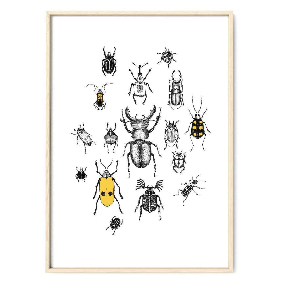 Käferparade Poster Kunstdruck Zeichnung