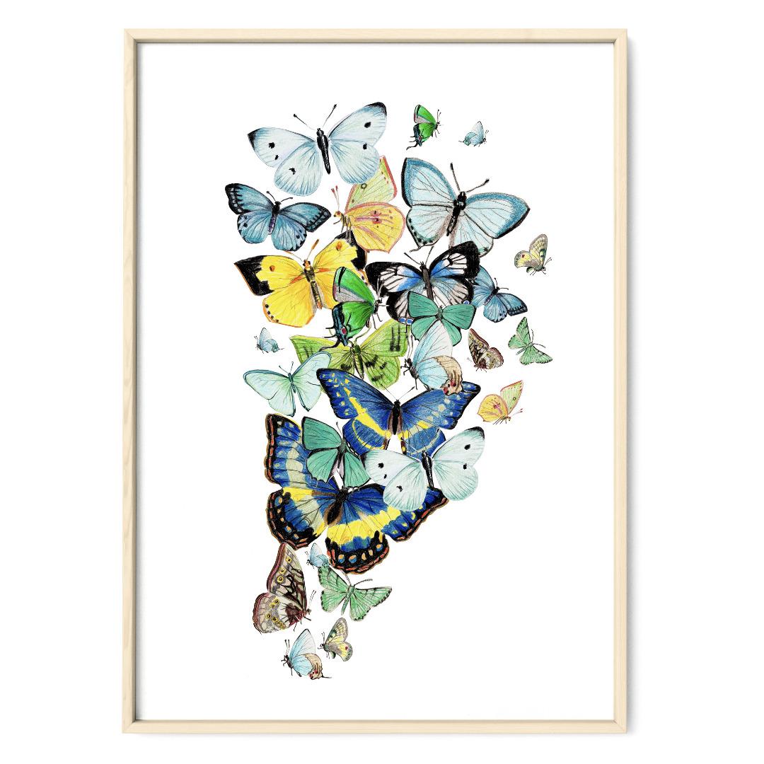 Schmetterlinge blau Poster Kunstdruck Zeichnung