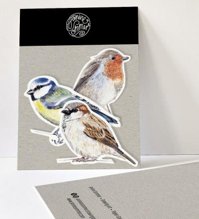 Sticker Gartenvögel Spatz Blaumeise und Rotkehlchen