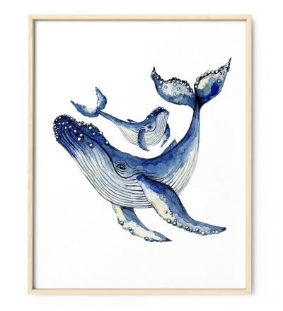 Buckelwale Poster Kunstdruck Zeichnung Aquarell Reproduktion