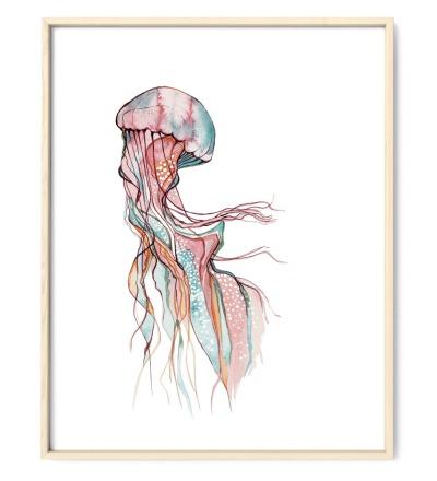 Jellyfish Qualle Poster Kunstdruck Zeichnung Aquarell