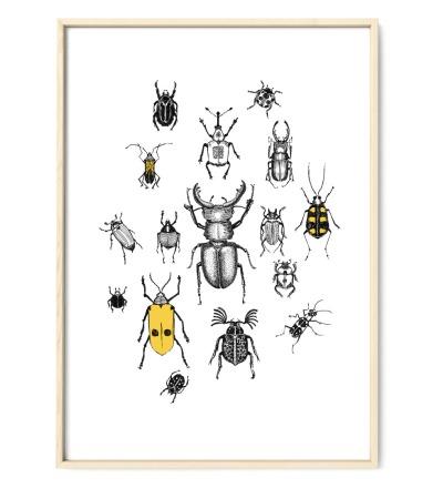 Käferparade Poster Kunstdruck Zeichnung Mischtechnik Reproduktion