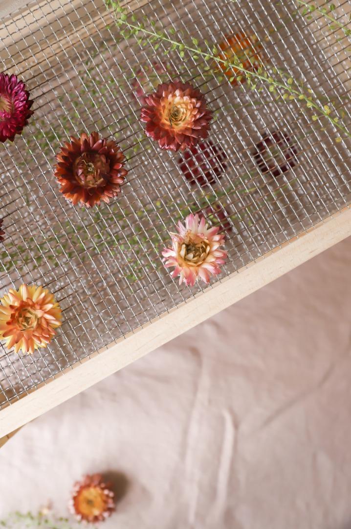 Blumen- & Kräutertrockner 2