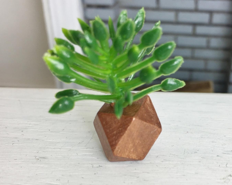 Grünpflanze in geometrischer Vase