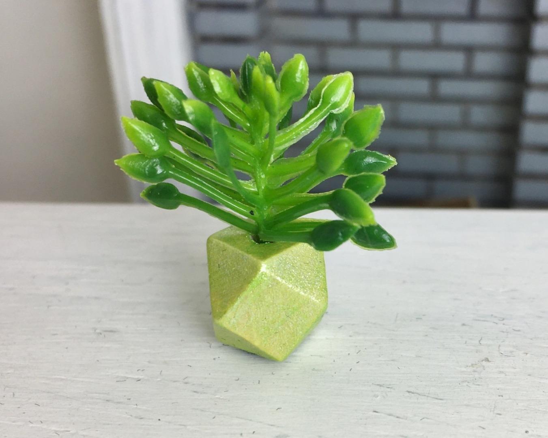 Grünpflanze in geometrischer Vase 3