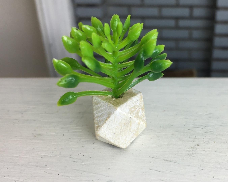 Grünpflanze in geometrischer Vase 8