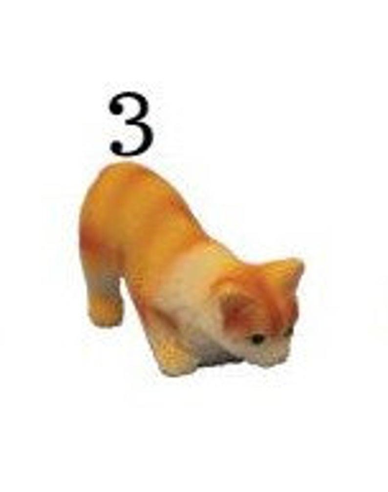 Katze 3