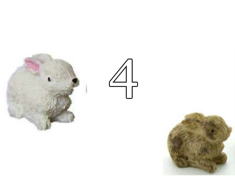 Hase Kaninchen Hasenstall Kaninchenstall für die