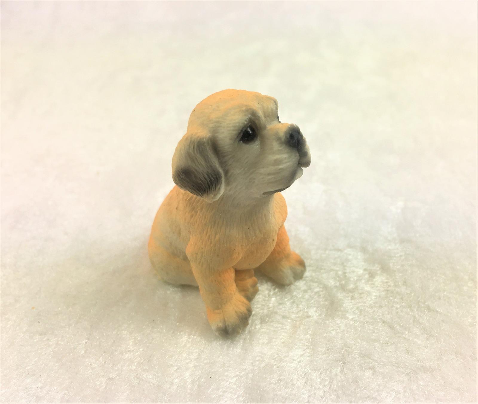 Hund sitzender Golden Retriever für die