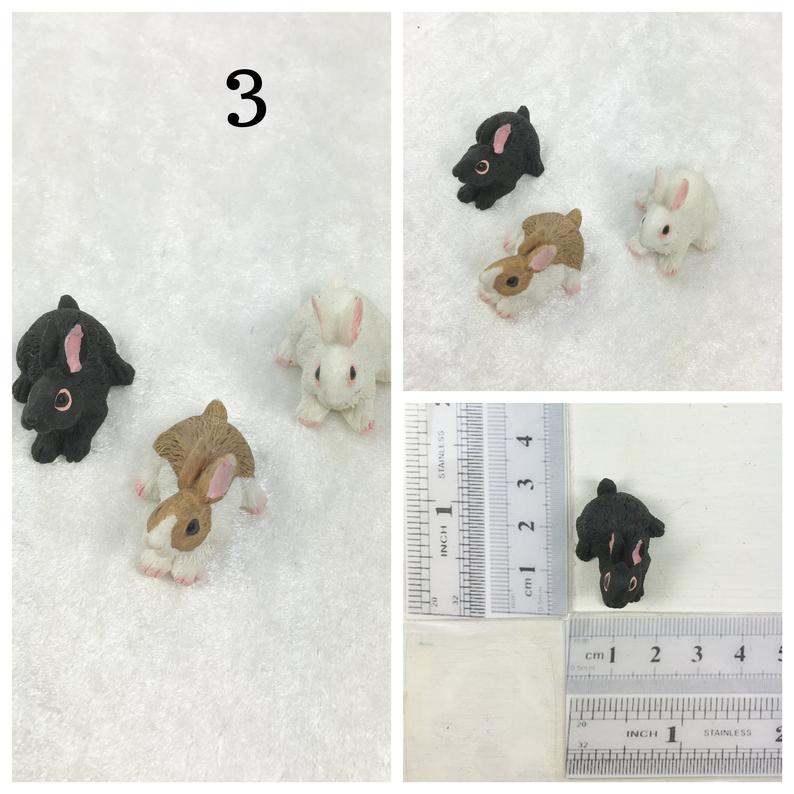 Kaninchen 3